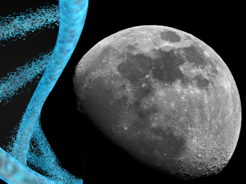 this-startup-wants-to-stash-your-dna-on-the-moon