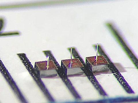 wireless-network-brings-dust-sized-brain-implants-a-step-closer