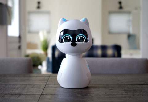video-friday:-kiki-is-a-new-social-robot-created-by-two-ex-googlers