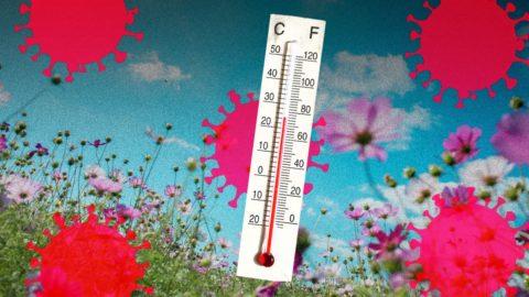 fact-or-fiction:-warmer-weather-slows-down-the-coronavirus