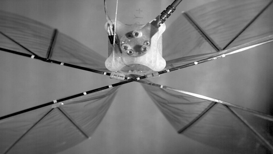 high-performance-ornithopter-drone-is-quiet,-efficient,-and-safe