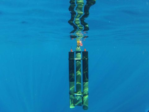 these-underwater-drones-use-water-temperature-differences-to-recharge