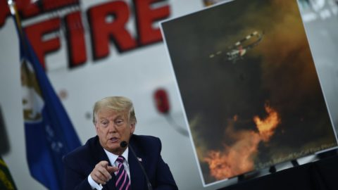 'probably-like-50-50':-trump-privately-admitted-climate-change-fueled-california's-fires