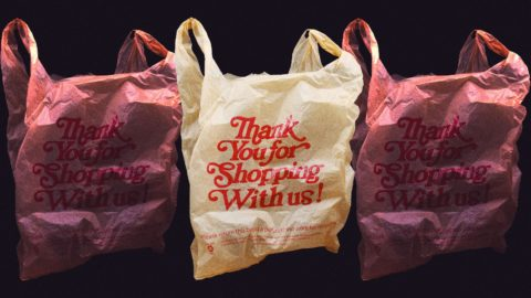 new-york-state's-bag-ban-is-finally-being-enforced