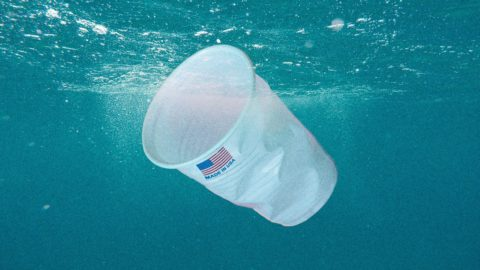 which-countries-are-responsible-for-all-that-ocean-plastic?