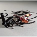 a-swarm-of-cyborg-cockroaches-that-lives-in-your-house