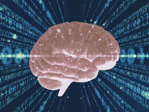what-exactly-is-your-brain-doing-when-reading-code?
