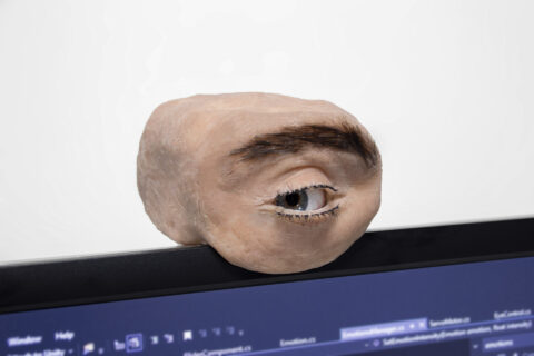 video-friday:-robotic-eyeball-camera