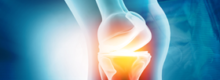 new-biosealant-can-help-fix-cartilage-wear-and-tear