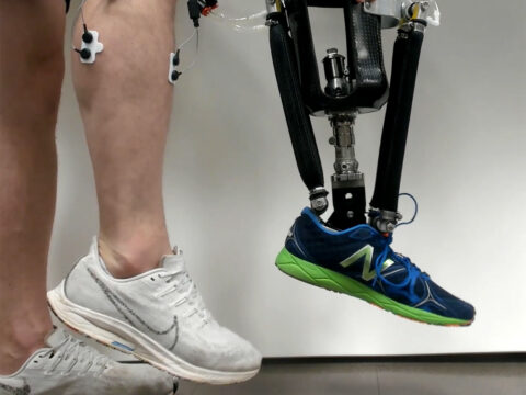 brain-signals-can-drive-exoskeleton-parts-better-with-therapy