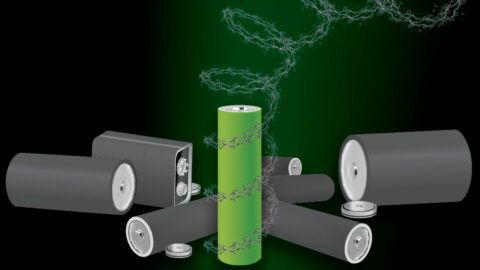 metal-free,-recyclable-peptide-battery-developed
