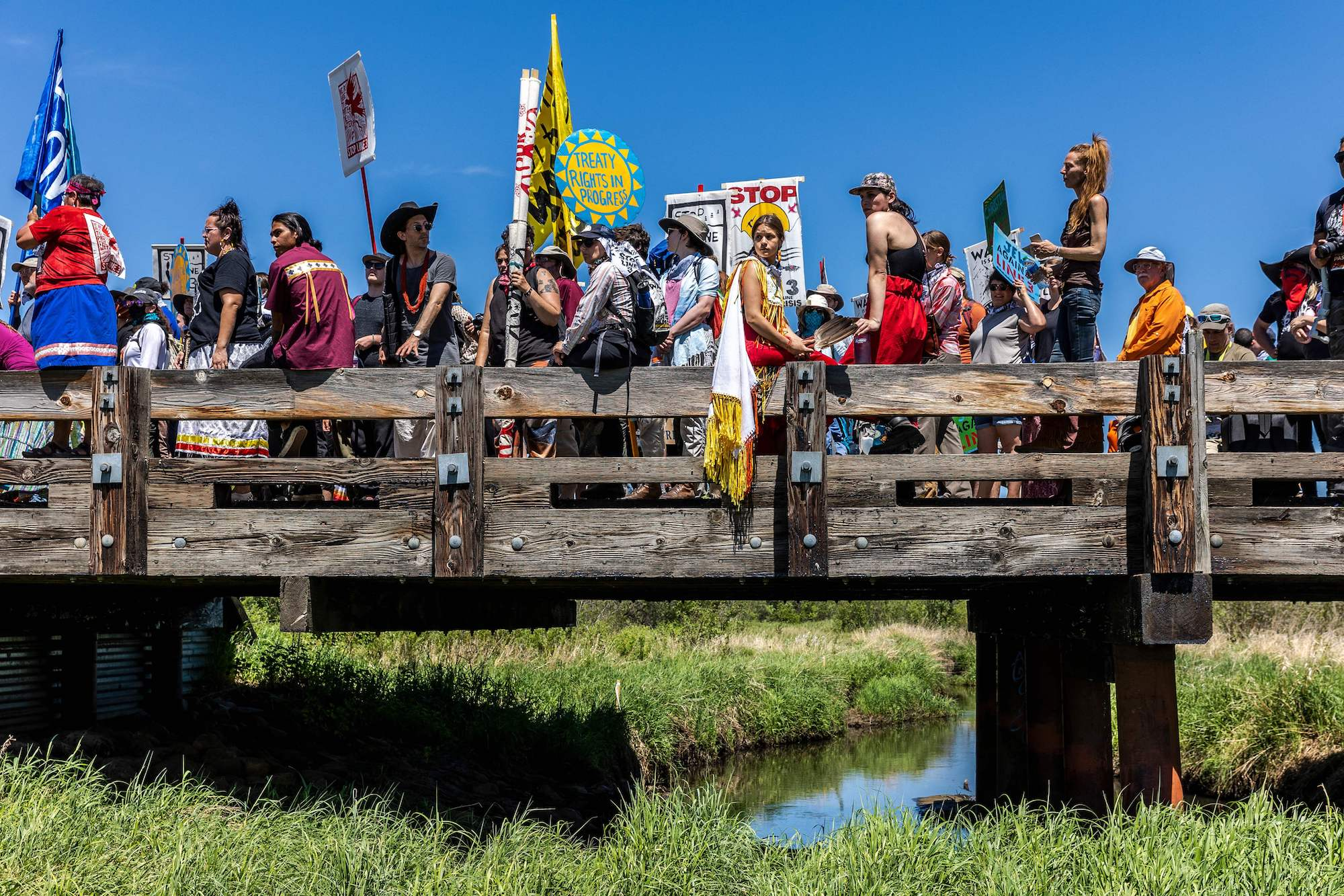 a large group of activists, many of whom are dressed in traditional indigenous clothing, stand on a wooden bridge over a river thick with green buhes