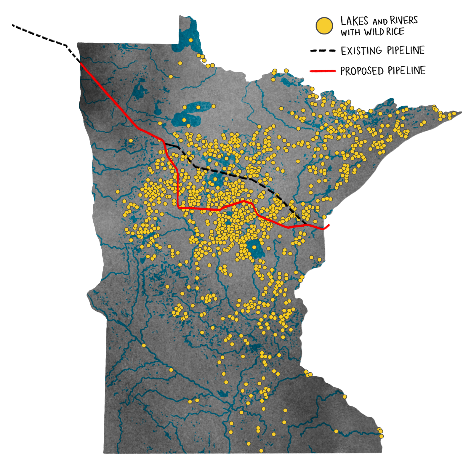 a map of Minnesota showing how the Line 3 pipeline would cut through wild rice grow areas, marked in yellow dots