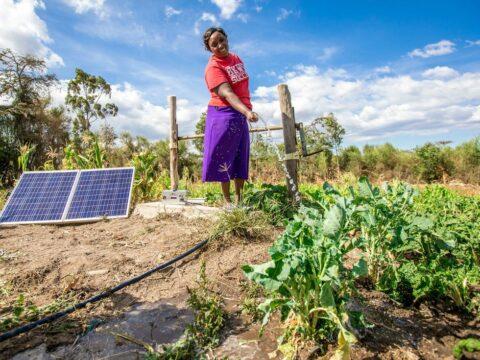 off-grid-solar's-killer-app