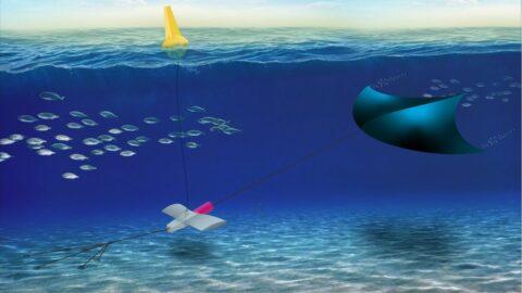 underwater-manta-kites-for-tidal-power-harvesting